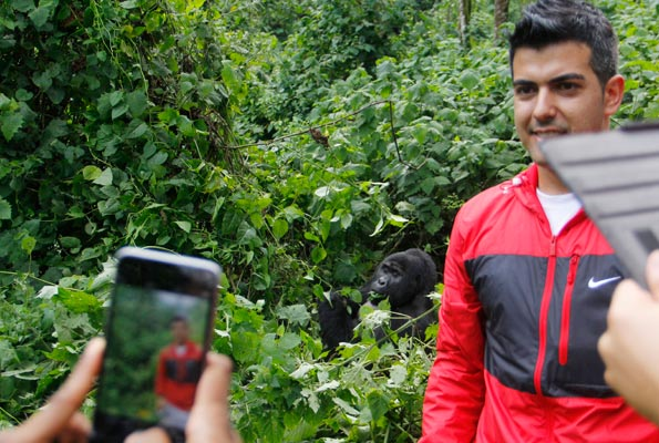 Barcelona Legend Rayco Garcia, takes a photo next to a mountain gorilla in Bwindi National Park during his and other team legends' visit to Uganda recently.