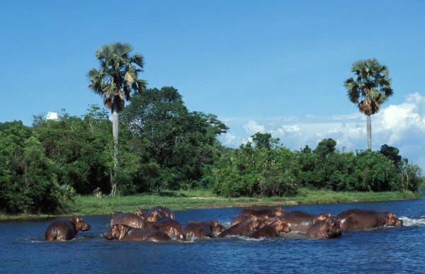 Beauty-Of-Uganda-2 (1)