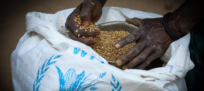FOOD: In-kind food assistance