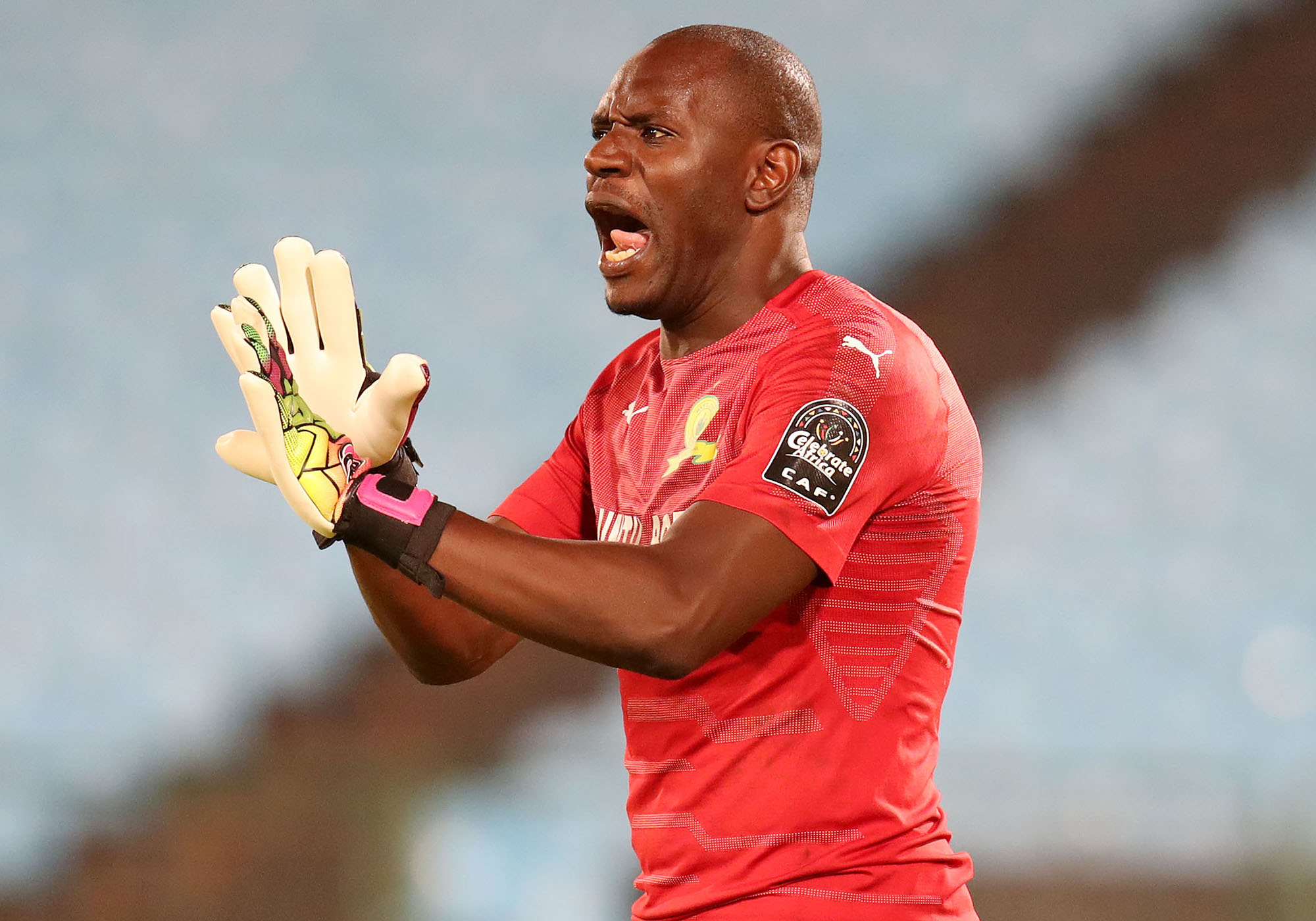Denis Onyango signs new contract with Mamelodi Sundowns - Eagle Online